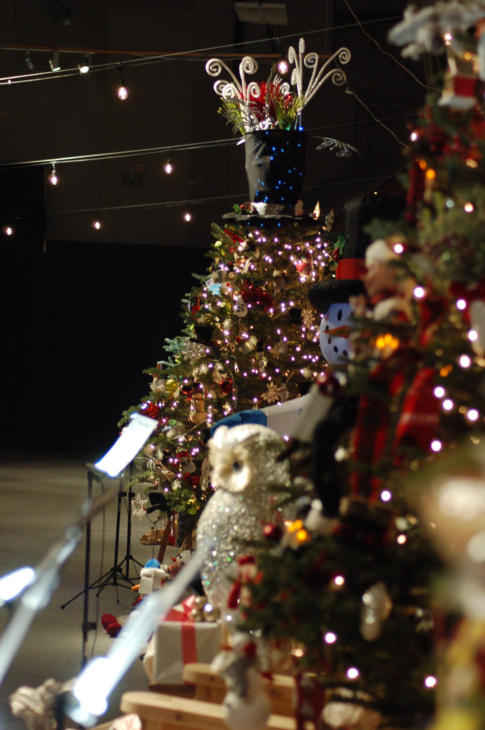 100 Becks Christmas Tree Farm Gardening Eden East Bay  - Becks Christmas Tree Farm